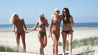 Insanely hot girls convention out of doors and eating each other out of doors on the beach